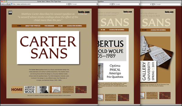 Screenshots of the Carter Sans microsite